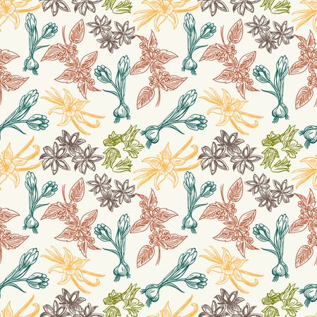 Colorful vintage seamless pattern with hand drawn spice herbs, vector illustration Ilustração