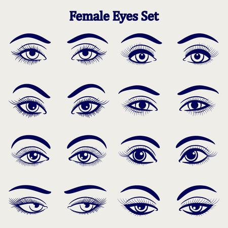 human face: Ballpoint pen drawing female eyes set isolated on grey backdrop. Vector illustration