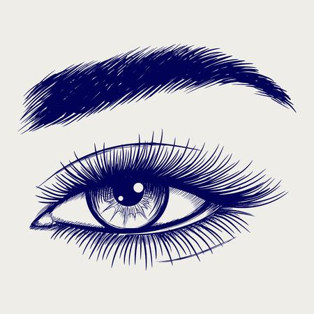美しい女性の目のボールペン スケッチ。ベクトル図