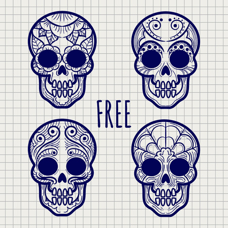 Mexican sugar or calavera skulls on notebook page, vector illustration