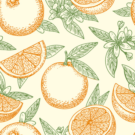 Orange fruit hand drawn pattern. Yellow oranges, green leaves and flowers seamless background pattern vector drawing