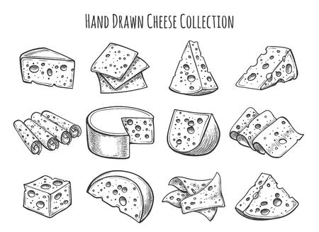 Conjunto de dibujo de queso. Vector doodle colección de piezas de queso y rebanadas