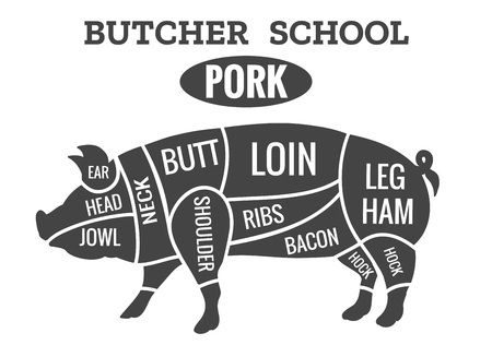 Vintage pig cuts. Pork butcher diagram for grilled chop school vector illustration Illustration