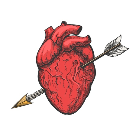 Human heart with arrow drawing. Real vector love heart tattoo etching vector illustration
