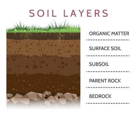 Capas de tierra. Esquema de capa de suelo con hierba y raíces, textura de tierra y piedras ilustración vectorial