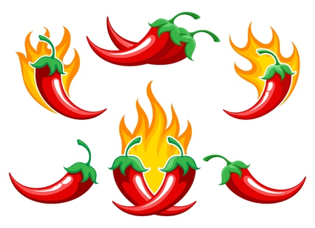 Chili pepper on fire. Closeup burned cayenne pepper for spicy food ingredients or capsicum salsa cooking, vector illustration 일러스트
