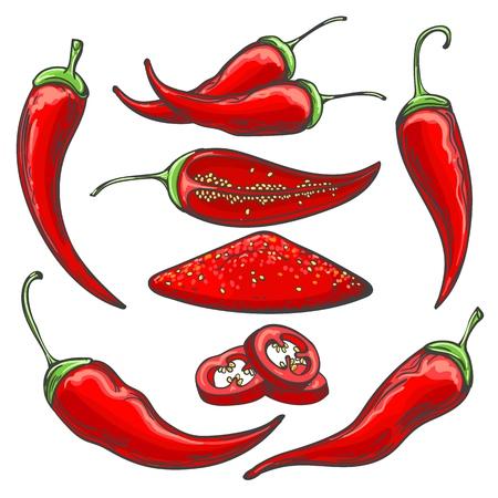 Bosquejo de la cosecha de pimienta. Conjunto de chiles dibujados a mano, chiles triturados y en rodajas aislado sobre fondo blanco, ilustración vectorial