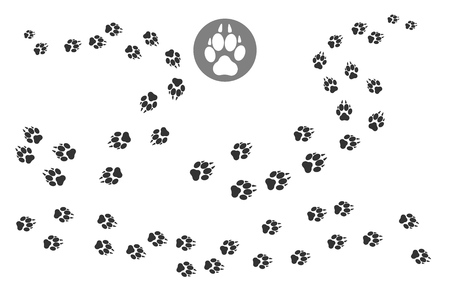 Paw prints track. Puppy pawing print, walking dog paw pattern, vector illustration