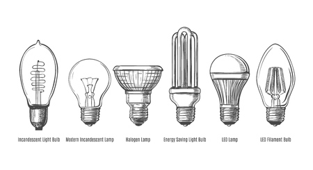Black and white lightbulbs sketch. Light bulbs evolution retro sketch vector illustration, vintage hand drawn lamps