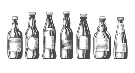 Beer bottles sketch. Hand drawn old beerbottle set for brewery, crafted pub bottling vector illustration, vintage craft brewing graphic