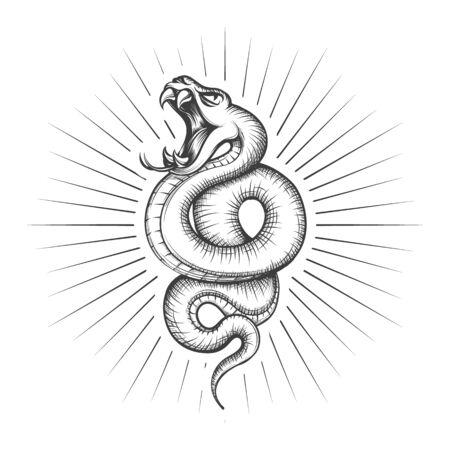 Rattlesnake snake tattoo vector illustration. Hand drawing venomous viper snakes symbol, black serpent tattooing design sketch isolated on white background Çizim
