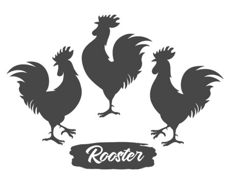Rooster silhouettes. Chicken cock silhouette set, farm bantam birds black vector images isolated on white background, poultry chickens roosters
