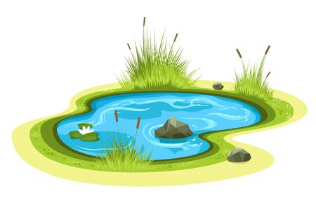 Cartoon garden pond. Small freshwater lake vector isolated with stones, colorful mere image Stock Illustratie