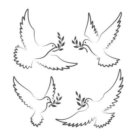 Dove signs. White doves with olive branch symbols, pigeon of peace vector illustration, christian hope flying birds