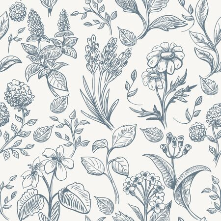 Herbs sketch seamless pattern. Botanical herbs texture fabric, romantic hand drawn wild flowers seamless print, vector illustration Ilustração
