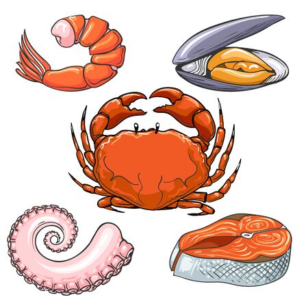 Hand drawn sea meal. Crab and prawn, squid tentacle and fish steak, mussel shellfish delicious seafood sketch color vector illustrations