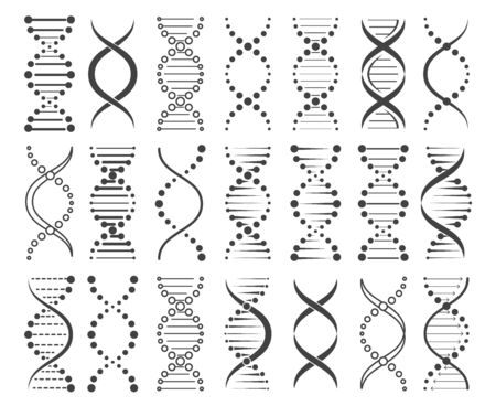 Structure of chromosomes. Chromosome elements sketch, hand drawn dna icons set, vector illustration of gene spiral symbols of biochemistry isolated on white background Vettoriali