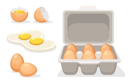 Broken chicken eggs. Cartoon fresh brown cooking eggs in tray packed, cracked empty egg, fried yolks for diet breakfast, vector illustration set of eggs isolated on white background Illustration