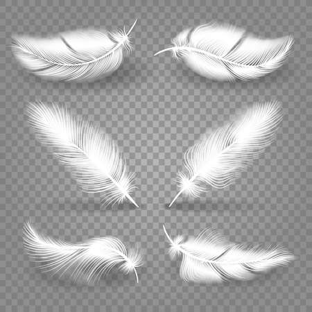 Realistic white feathers. Falling fluffy twirled elements of flying birds, vector illustration of set of decorative lightweight falling Vettoriali