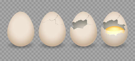 Realistic cracked eggs. Chicken 3d eggshell with crack, natural bird egg objects from incubator, vector illustration of chicken broken eggs with cracks and yolk isolated on transparent