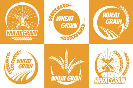 Wheat grain emblem set. Concept of natural organic grained healthy breakfast, harvest barley on fields for baking loaf or cake, golden insignia of agriculture on farms in autumn
