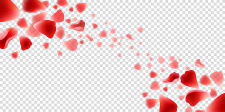 Flying rose petals. Realistic beautiful red petal set, concept of love and wedding, vector illustration elements of flowers on transparent background Vettoriali