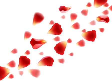Flying red petals. Realistic beautiful roses petal set Archivio Fotografico - 154080314
