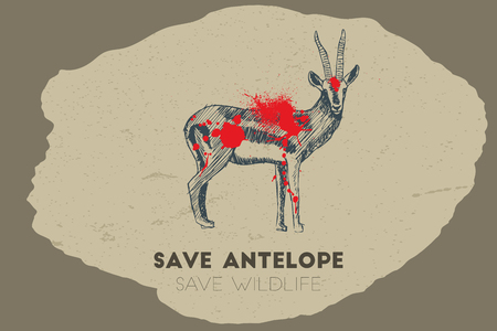 gun shot: Save antelope save wildlife. Gun shot with blood over antelope.