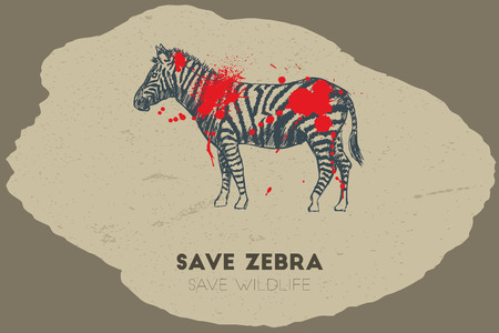 gun shot: Save zebra save wildlife. Gun shot with blood over zebra. Illustration