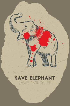 gun shot: Save elephant save wildlife. Gun shot with blood over elephant.
