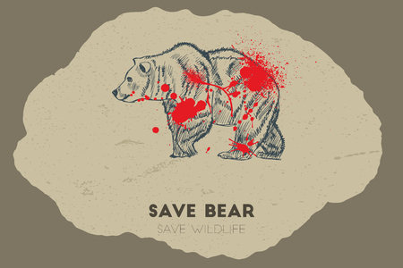 gun shot: Save bear save wildlife. Gun shot with blood over bear.