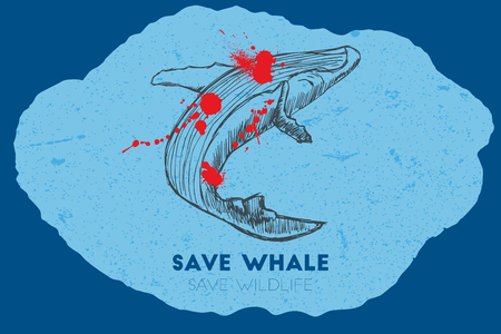 gun shot: Save whale save wildlife. Gun shot with blood over whale. Illustration
