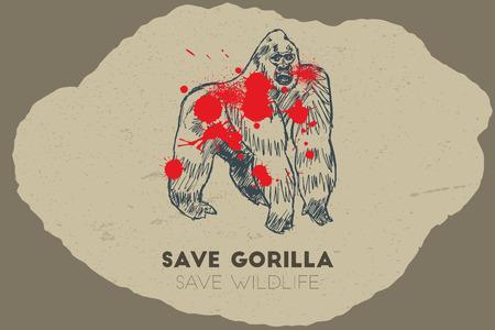 endanger: Save gorilla save wildlife. Gun shot with blood over gorilla.