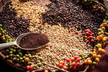 Different type of raw and roasted coffee bean. Stock Photo