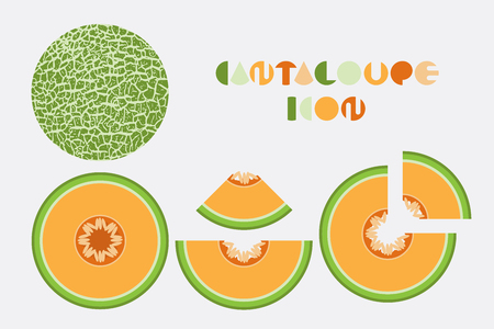 Icon set of cantaloupe and melon graphic design with circular shape.