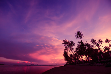 Silhouette of coconut trees by the beach against dramatic sunset sky background.