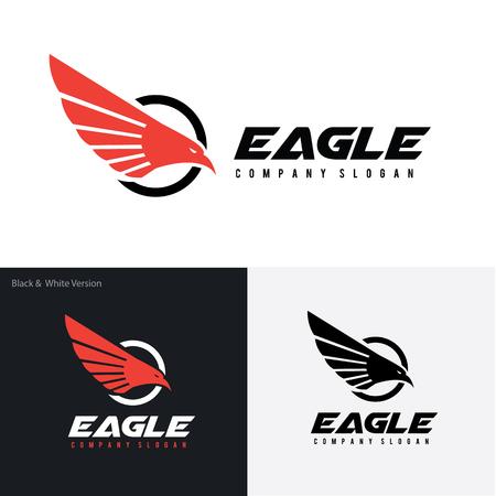 aigle: template vecteur oiseau