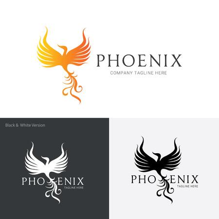 phoenix bird: bird template vector