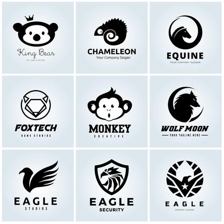 Animal logo set, eagle logo, monkey, chameleon, horse, fox logo