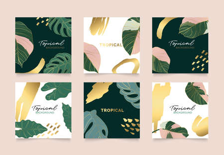 Golden tropical leaves square cover design vector set. Social media stories and post template.