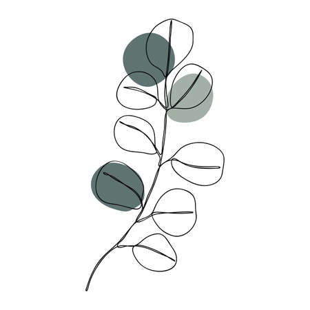 Silver dollar wedding leaves Line art. Abstract minimal flora design for cover, prints, floral wall art, Home decor picture, fabric and wallpaper. Vector illustration Imagens - 151917310