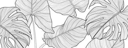 Black and white Decorative tropical leaf  background pattern, Split-leaf Philodendron plant with monstera plant line arts for printing, postcard, packaging and cover. Vector illustration.