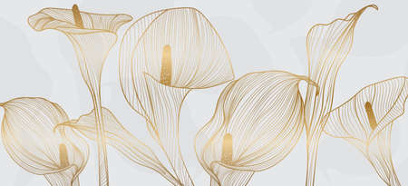 Golden calla lily pattern vector, Wedding wallpaper background for warapping paper design, brochure, backdrop, packaging and print vector illustration. Imagens - 153571040