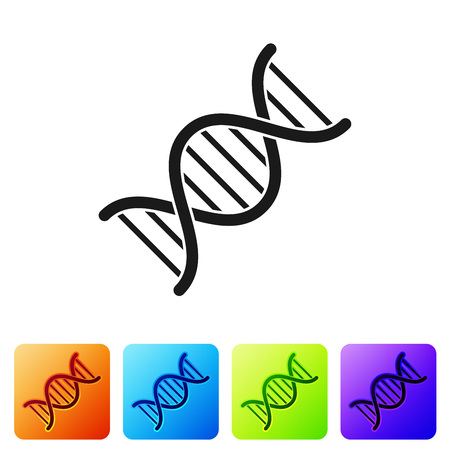 Black DNA symbol icon isolated on white background. Set icon in color square buttons. Vector Illustration