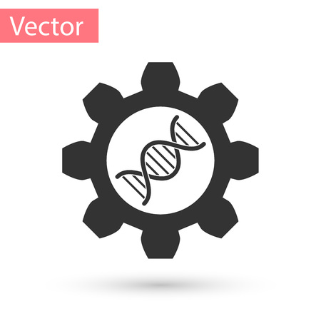 Grey Genetic engineering icon isolated on white background. DNA analysis, genetics testing, cloning, paternity testing. Vector Illustration