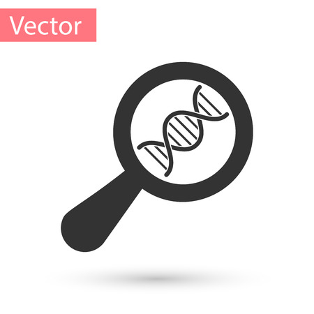 Grey DNA research, search icon isolated on white background. Magnifying glass and dna chain. Genetic engineering, cloning, paternity testing. Vector Illustration