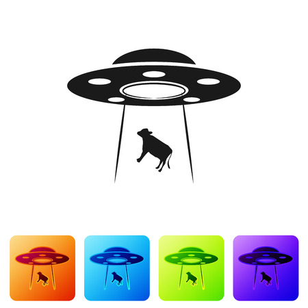 Black UFO abducts cow icon isolated on white background. Flying saucer. Alien space ship. Futuristic unknown flying object. Set icon in color square buttons. Vector Illustration