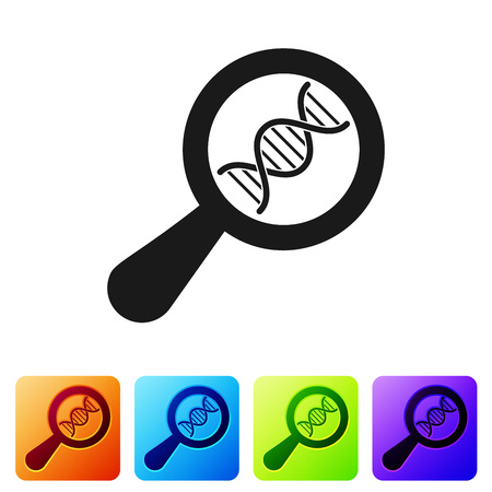 Black DNA research, search icon isolated on white background. Magnifying glass and dna chain. Genetic engineering, cloning, paternity testing. Set icon in color square buttons. Vector Illustration