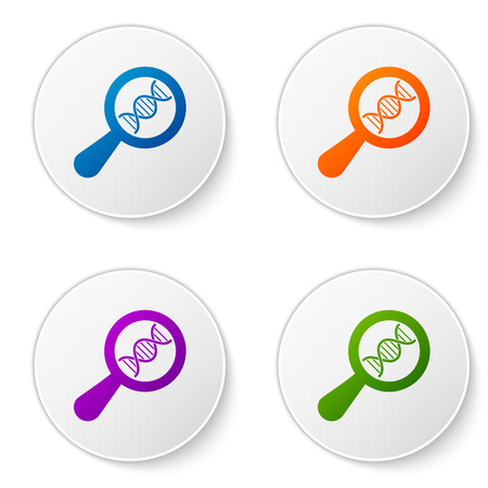 Color DNA research, search icon isolated on white background. Magnifying glass and dna chain. Genetic engineering, cloning, paternity testing. Set icons in circle buttons. Vector Illustration