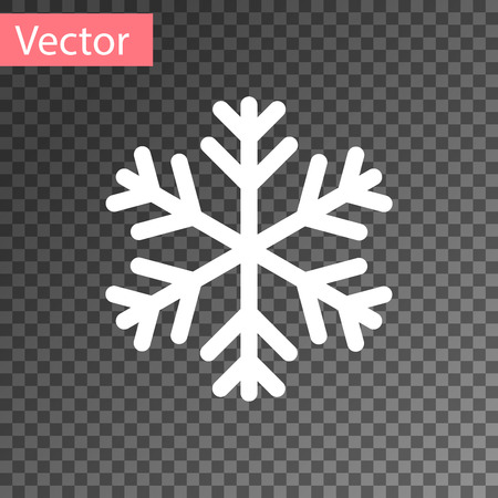 WhiteSnowflake icon isolated on transparent background. Vector Illustration